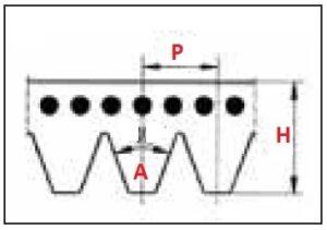 dimensões das correias poly V no sentido transversal